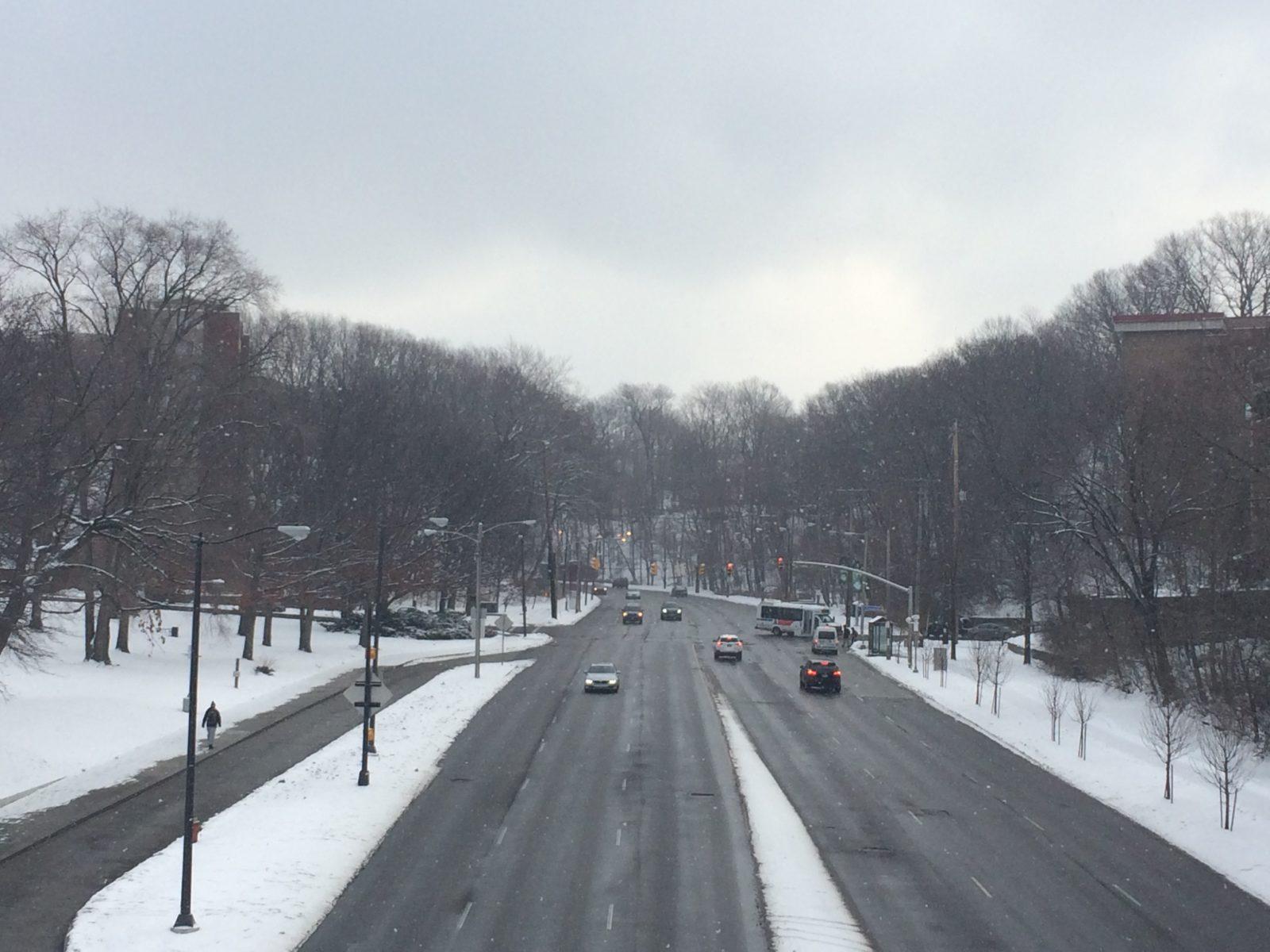 cedar hill-winter